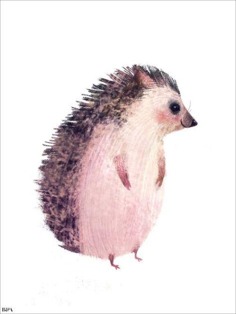 bareps eu Morning Mr Hedgehog